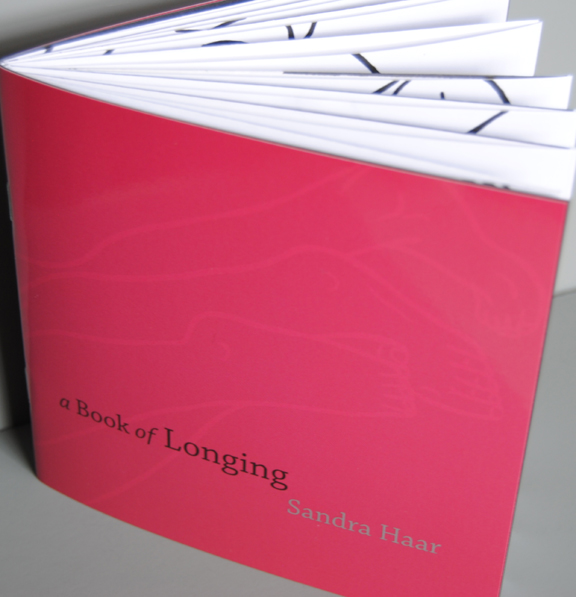Book of Longing, cover
